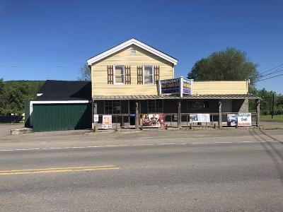 Tioga Commercial For Sale: 17907 Route 287