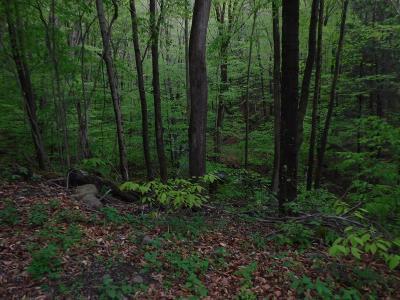 Shunk Residential Lots & Land For Sale: 5 Rabbit Lane