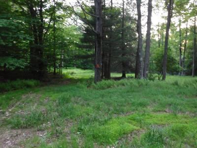 Laporte Residential Lots & Land For Sale: 1 Hayes Lane