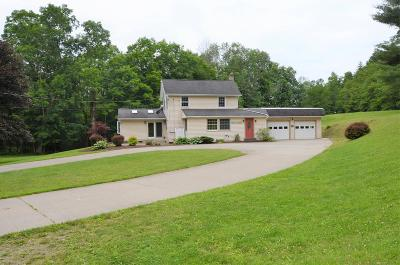 Sayre Single Family Home For Sale: 383 Litchfield Rd