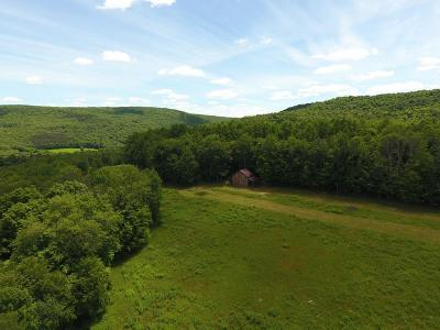 Wellsboro Residential Lots & Land For Sale: Dean Hill Road