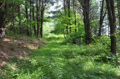 Wysox Residential Lots & Land For Sale: Glen Rd