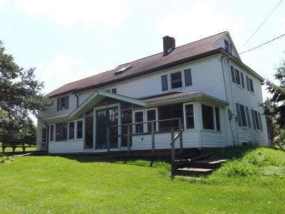 Dushore Single Family Home For Sale: 398 Connells Dam Road