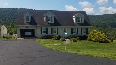 Dushore Single Family Home For Sale: 68 Holly Hill