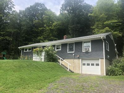 Millerton Single Family Home For Sale: 3927 Route 328