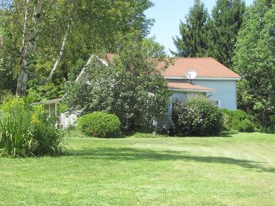 Wyalusing Single Family Home For Sale: 859 Flanagan Road