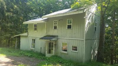 Shunk Single Family Home For Sale: 10748 Route 154