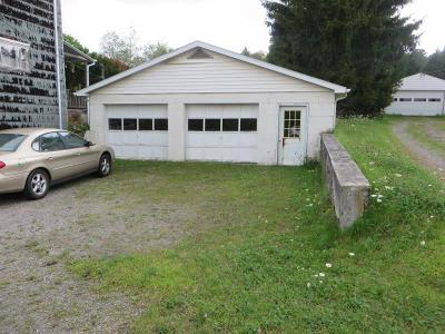 Mildred Single Family Home For Sale: 487 Rout 487