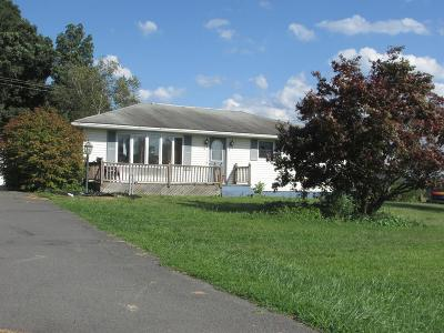Wyalusing Single Family Home For Sale: 41359 Route 6