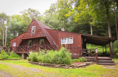 Wellsboro Single Family Home For Sale: 3902 Route 287