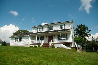 Towanda Single Family Home For Sale: 77 Spencer Road
