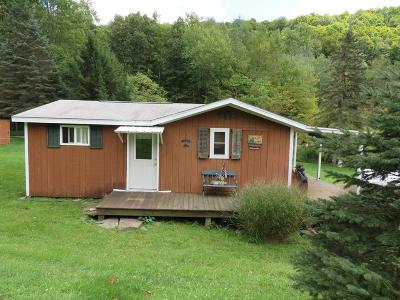 Roaring Branch Single Family Home For Sale: 464 Shanty Hollow