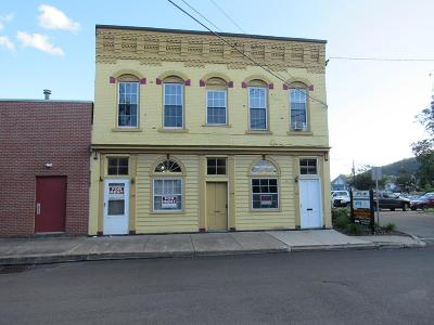 Athens Commercial For Sale: 107 Central Ave