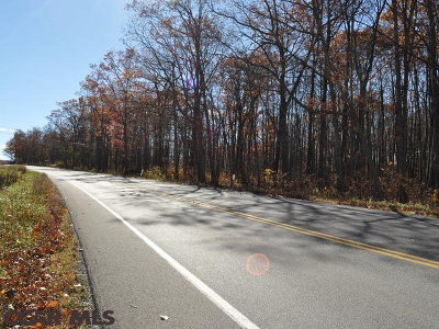 Residential Lots & Land For Sale: On Tyrone Pike