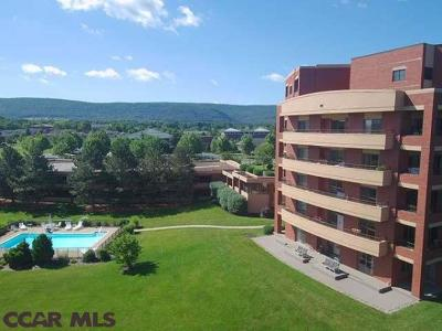 State College Condo/Townhouse For Sale: 455 Windmere Drive #4C