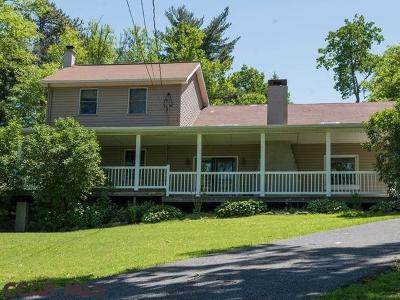 Bellefonte Single Family Home For Sale: 1708 Purdue Mountain Road