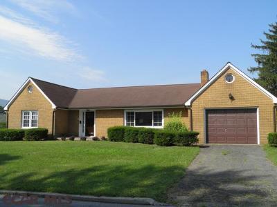 Single Family Home For Sale: 211 S Hampton Street N