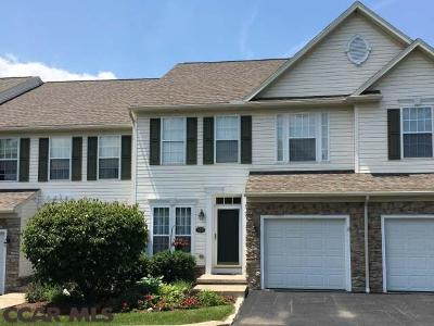State College Condo/Townhouse For Sale: 168 Scenery Court