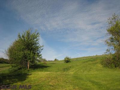 Residential Lots & Land For Sale: 1040 Boalsburg Road
