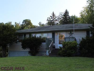 Single Family Home For Sale: 6325 Tyrone Pike