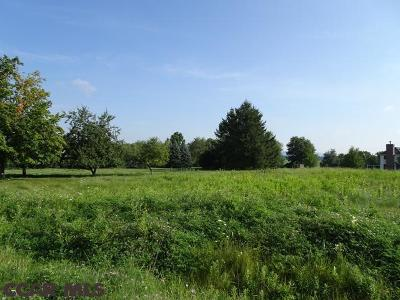 Residential Lots & Land For Sale: 120 Meadow Lark Lane
