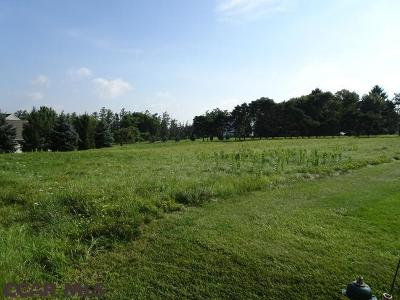 Residential Lots & Land For Sale: 150 Meadow Lark Lane