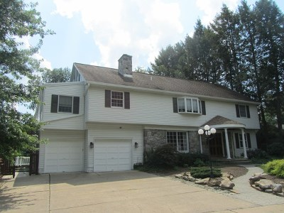 State College Single Family Home For Sale: 322 Arbor Way