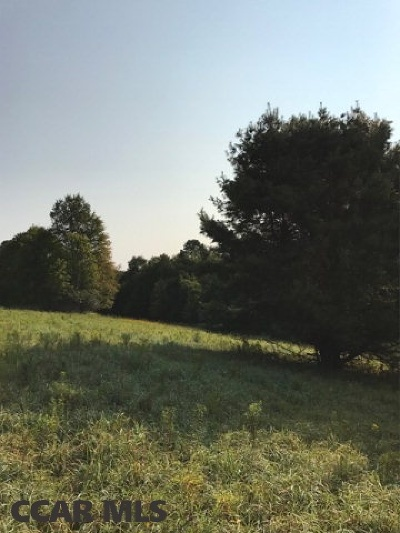 Residential Lots & Land For Sale: Lot 2 McNeil Run Road