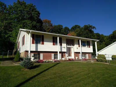 Single Family Home For Sale: 545 Flat Rock Road
