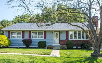 Single Family Home For Sale: 12 Pineview Street