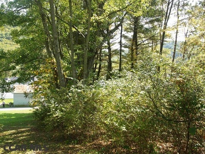 Residential Lots & Land For Sale: On A Alley & 6th Alley