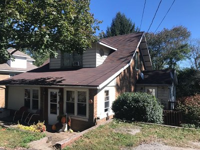 Single Family Home For Sale: 103 Blanchard Street
