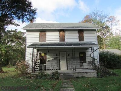 Centre County Single Family Home For Sale: 199 Chestnut Street