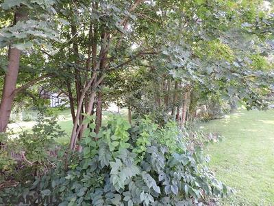 Residential Lots & Land For Sale: 128 Pine Grove Road E