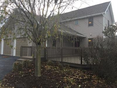State College Single Family Home For Sale: 376 Cogan Circle