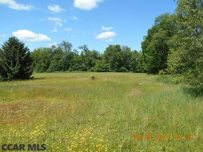 Residential Lots & Land For Sale: 1996 Old 220 Road