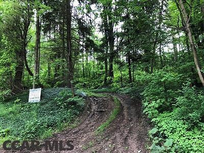 Clarence PA Residential Lots & Land For Sale: $45,000