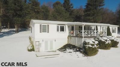Bellefonte Single Family Home For Sale: 751 Purdue Mountain Road