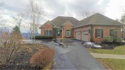 Bellefonte Single Family Home For Sale: 1118 Purdue Mountain Road