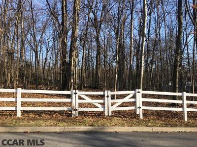 State College Residential Lots & Land For Sale: 160 Princeton Drive