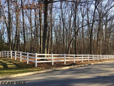 State College Residential Lots & Land For Sale: 161 Princeton Drive