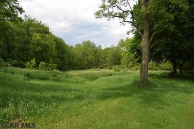 Residential Lots & Land For Sale: 754 Big Hollow Road