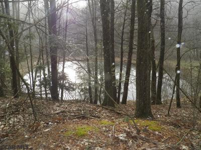 Lock Haven PA Residential Lots & Land For Sale: $229,900