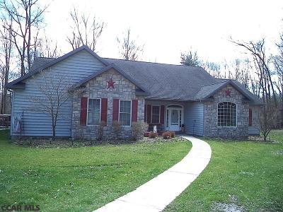 Centre County Single Family Home For Sale: 225 Milo Lane