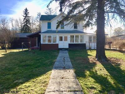 Single Family Home For Sale: 29 Dutchtown Road
