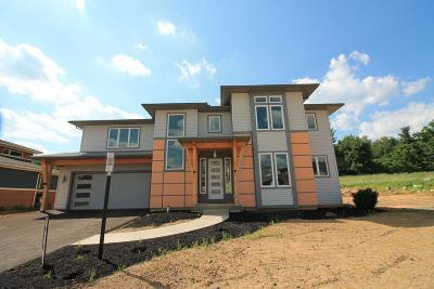 Single Family Home For Sale: 193 Derek Drive