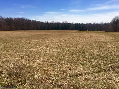 Residential Lots & Land For Sale: On Back Street