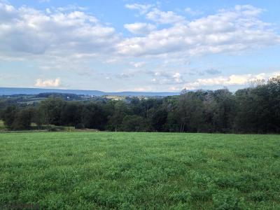 Residential Lots & Land For Sale: On General Potter Highway