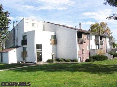 State College Condo/Townhouse For Sale: 808 Stratford Drive #36