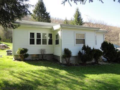 Tyrone Single Family Home For Sale: 206 Gurekovich Hollow Road